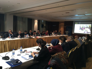 Roundtable: Dialogue in Difficult Times: The Case of Northern Ireland and the Philippines, Ankara, Turkey, 4 March 2017