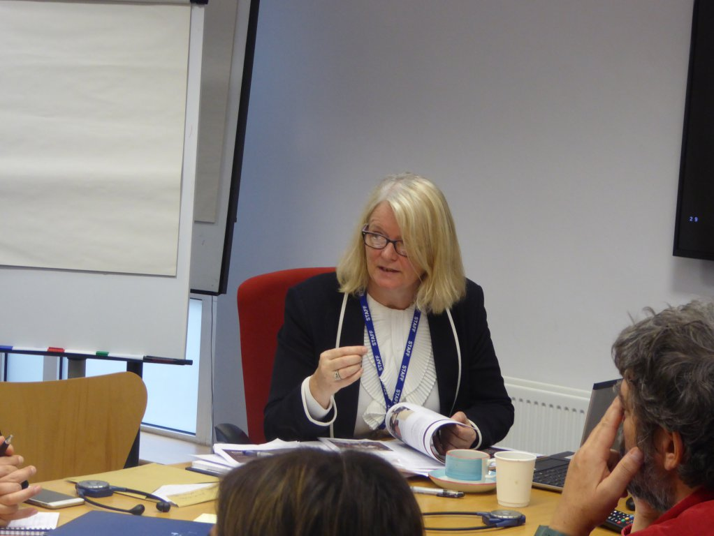 Aine Hearns, Director of UN Conflict and Resolution Unit at the Irish Department of Foreign Affairs