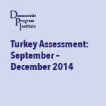 DPI Turkey 'On the Ground' Assessment September – December 2014